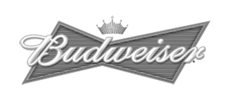 Budweiser beer in our beer cave!